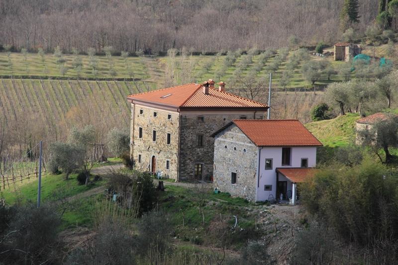 2 large stone houses