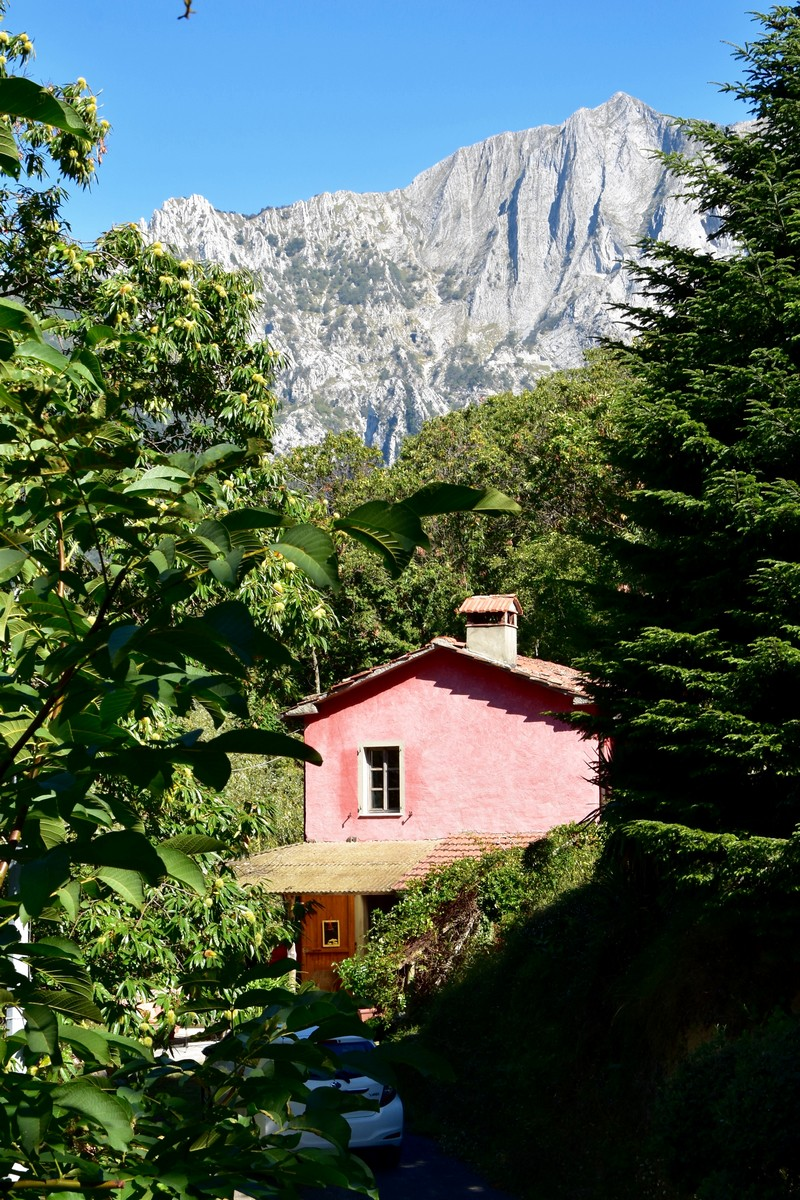 House in the Woods of Seravezza