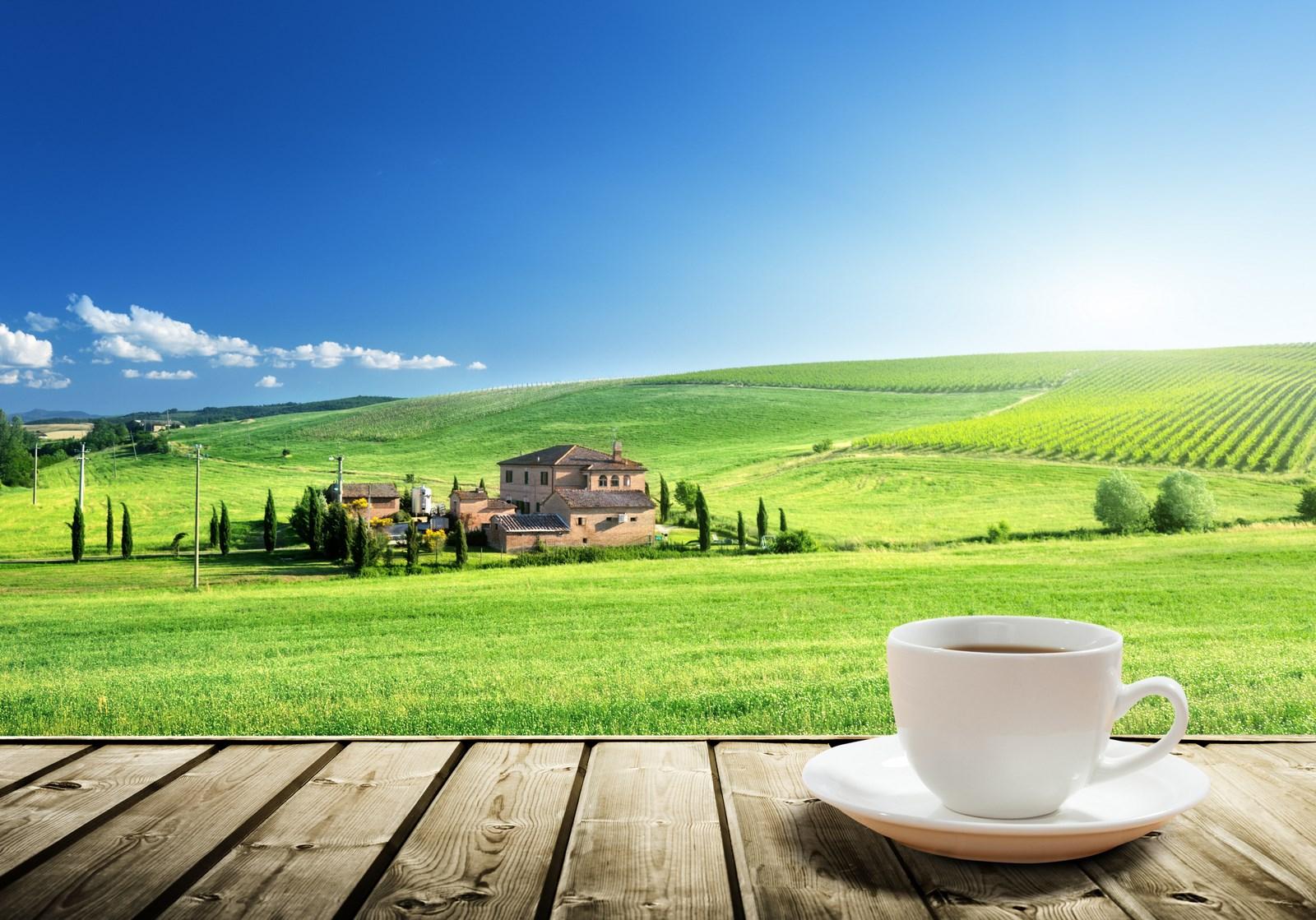 Italy's pick-me-up - espresso